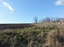 Вот так выглядит окраина деревни, убранные поля. Декабрь на дворе, а кое-где зеленеет травка.