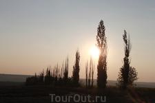 где-то около Ростова, деревья очень красивые