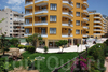Фотография отеля Club Pasha Beach