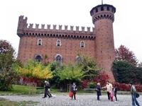 Замок под Турином.