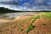 Зеленая дорожка репейников радостно притягивает взгляд, увлекая дальше по берегу Парашкина ерика. А песчаные косы Ахтубы создают иллюзию «марсианской» ...