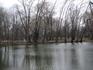 Вид на пруд с мостика.