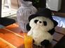 Китайская панда из Порт-Авентуры