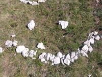 Каменный смайл :)