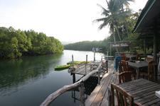 Mangrove Bungalow & Restaurant