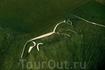 Уффингтонская белая лошадь - 110-метровая меловая фигура на склоне 261-метрового известнякового Холма белой лошади близ местечка Уффингтон в английском ...