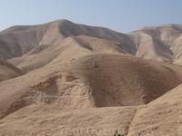 Израиль. Пустыня.