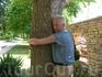 Говорят, обнимать это дерево полезно.