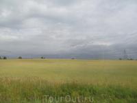 Вологодское поле