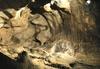 Фотография Ахштырская пещера