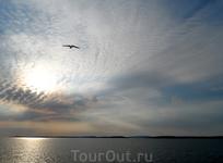 Конец дня на Белом море.