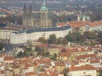 панорама города.вид с башни