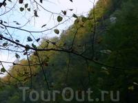 Высоко над головой были на первый взгляд бесконечные горы, чуть тронутые красками осени. Гуамское ущелье