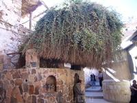 На территории монастыря растет Неопалимая купина - куст, в пламени которого, согласно Ветхому завету, Бог впервые явился пророку Моисею.