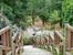 Вниз по лестнице, ведущей вверх. Если отклониться от основной дорожки, то дальше начинается местность больше похожая на лес, чем на парк.