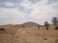 начало пустыни