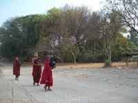 молодые монахи в поисках пропитания