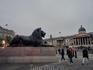 Согласно знаменитой легенде, львы на Трафальгарской площади в Лондоне оживут после того, как Биг-Бен пробьет тринадцать раз. А пока они спокойно и величественно ...