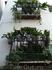 Гранада. Балкончики