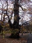 На One tree Нi, несмотря на чудесную погоду, оказался чудовищный ветродуй!