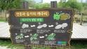 Вот такие милые анимешно-познавательные таблички украшают парк