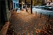 Осень в Тбилиси