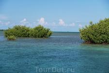 проплывая на катамаране по водам  К. Ларго
