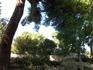 Парк королевы Елены. Старейший городской парк в Хорватии