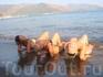 Marmaris (summer time)