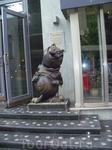 """Увидели очень симпатичного толстого котика возле кафе """"Шуры-Муры"""" на набережной"""