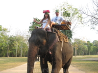 катаемся на слониках