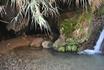 Пещера, в которой скрывался юный Давид