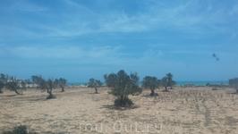 Так выглядит часть острова , необычная пустыня!