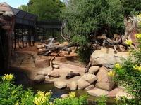 В зоопарке Перта