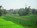 Вечно зеленый город в Египте Кена.