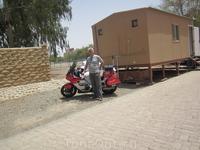 Зам шерифа на финиковой плантации в Аль Айне.