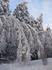 Напротив Хатыни, после ледяного дождя