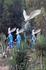 Эти ушастики призывают следить за экологией :))