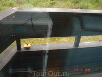 Пока я ходила в водный центр в отеле, кто-то положил мне на балкон удивительно симпатичный маслёнок )))