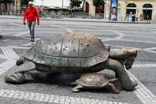 Черепаха рядом с Аквитанскими воротами.