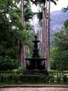 Фотография Ботанический сад Рио-де-Жанейро