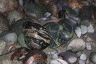 чудо камни