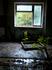 Василию Деомидовичу Дубоделу, умершему в августе 1988 года, и всем былым и будущим жертвам Чернобыля посвящаются эти строки  Не регистрировали нас и ...