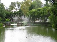 фонтаны на пруду (на Ленинградской улице)