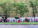 Шли бодро и весело, погоняя овец и коров, с песнями и плясками, в национальных костюмах, характерных для жителей сельской местности в период Раннего Средневековья. Это старинный праздник перегона отар Fiesta de la Trashumancia, насчитывающий около 700 лет. Правда, в последние годы он превратился в акцию протеста против урбанизации Испании и в защиту права животноводов на использование традиционных путей для перегона животных, проходящих в том числе по территории современных городов, в защиту древнего выпаса скота.