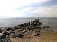 Финский залив. Но уже отлив; те же камни, что и выше.