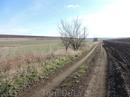 А вот и сельская дорога. Выглядит красиво и даже несколько романтично, пока не пойдет дождь, и она не превратится в непролазное болото