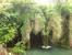 Водопад, падающий не с горной высоты, а струится по растениям. Взгляда от этого зрелища не оторвать, завораживает.