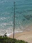 Чистая, прозрачная вода Средиземного моря, омывающая золотистые пляжи Калельи.