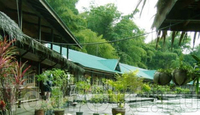 Фото отеля Рай на реке Квай